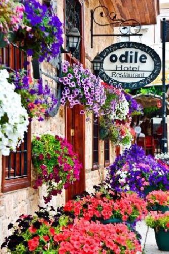 Odile Konak hotel transfer