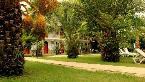 Olympos Yavuz Hotel transfer