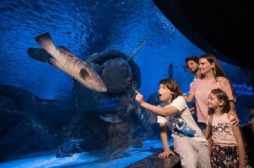Antalya-Aquarium-TOURS